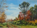 autunno nei vivai di Mariano(2012) - olio su tavola intelata - cm. 54x32 (1)