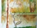 riflessi-nel-parco-acquerel