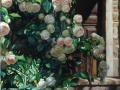 Roseto 90x140 cm