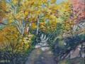 Strada nel bosco, olio su tela, 50x60 Anno 2012