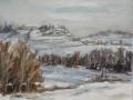 Brianza sotto la neve(2012) - olio su tavola intelata - cm. 35x45 (1)