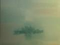 MEDITERRANEO PRIME FIORITURE