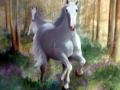 Cavalli nel bosco 100x100