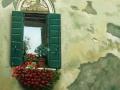 CAT. 365-12 Finestra fiorita a Venezia