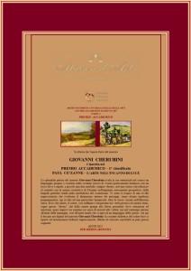 Premio accademico Paul Cézanne con testo